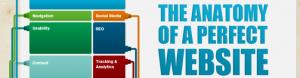 WEB anatomija
