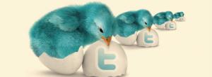 Twitter izskats